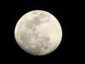 Photpgraph of nearly full moon