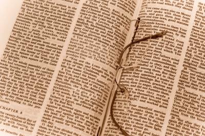 photograph of open bible