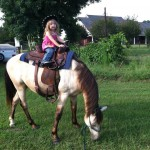 child riding small buckskin horse