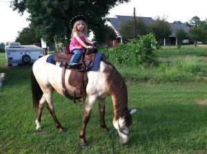 child riding small buckskin horse