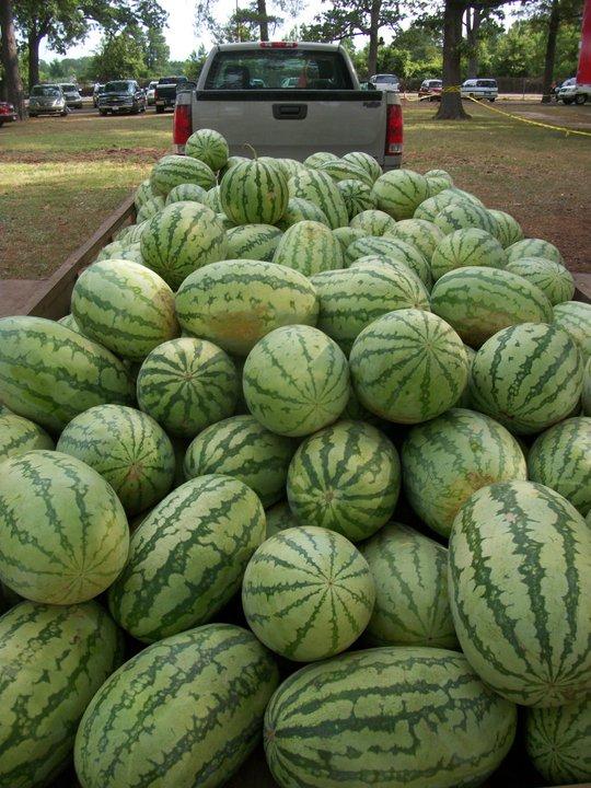 Hope Watermelon Festvial in Hope, Arkansas
