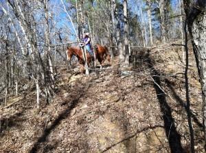 A very steep rocky grade...scary!