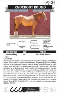 horse sale ad