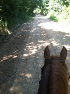 horseback riding on gravel roads